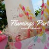 Party αναρρίχησης flamingo – Valia is turning 5