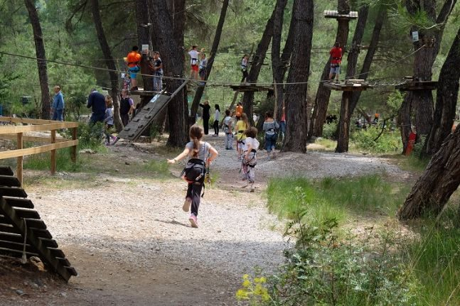 woodland party_adventure park 3