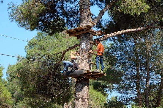 woodland party_adventure park 4