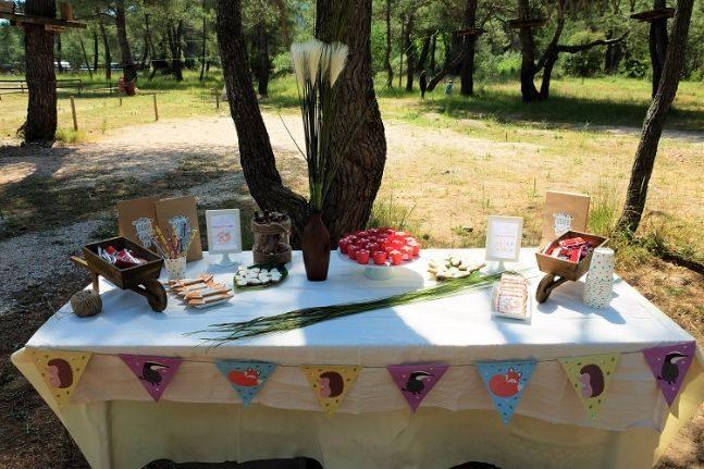 woodland party_alice 1