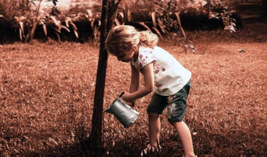 Φθινοπωρινές προτάσεις για τους μικρούς μας φίλους: Εικαστικές και εκπαιδευτικές δράσεις, θέατρο και βιβλία